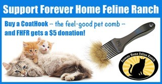 gallery/coathook-pet-comb-fundraising-forever-home-feline-ranch-facebook-timeline--1200x628